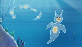 I'm a Fish - E29 - I'm a Sea Angle