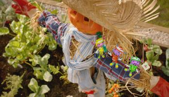 Floogals - S2E20 - Project Scarecrow