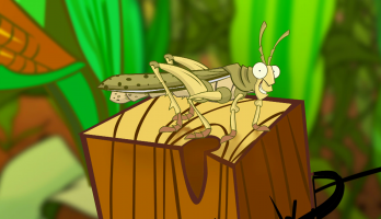 I'm a Creepy Crawly - E134 - Locust