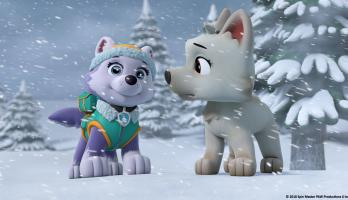 Paw Patrol - S6E19 - Pups Save a White Wolf/Pups Save a Wrong Way Explorer