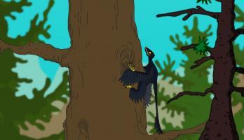 Ralph and the Dinosaurs - E13 - Microraptor