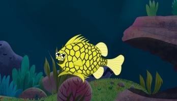 I'm a Fish - E14 - I'm a Pineapple Fish