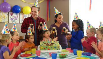Cutie Pugs - E26 - Happy Birthday