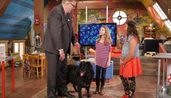 Finding Stuff Out With Zoey - E6 - Dogs, Dogs, Dogs
