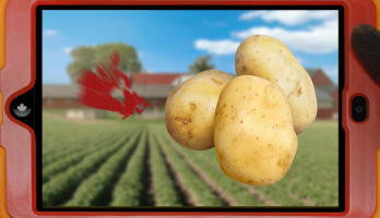 Canada Crew - E24 - Food