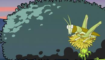 I'm a Creepy Crawly - E137 - Grasshopper