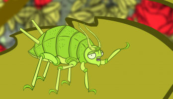 I'm a Creepy Crawly - E144 - Aphid