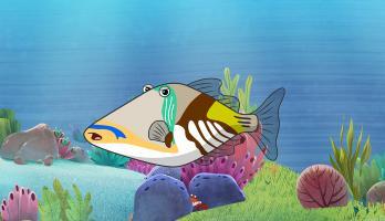 """I'm a Fish - E30 - I""""m a Trigger Fish"""