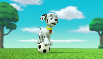 Paw Patrol - S3E303 - Pups Save the Soccer Game/Pups Save a Lucky Collar