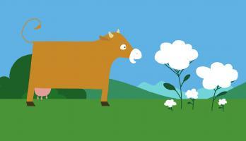Animanimals - E2 - Cow