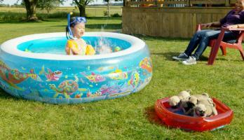 Cutie Pugs - E3 - The Swimming Pool
