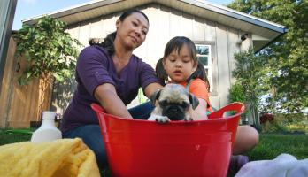 Cutie Pugs - E9 - Bath Time