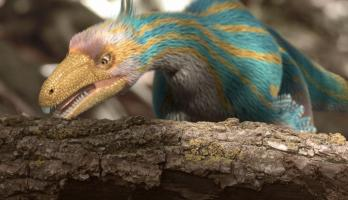 Dino Dana - S3E15 - Dino Flies/Winging It