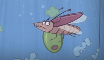 I'm a Creepy Crawly - E103 - Cockroach