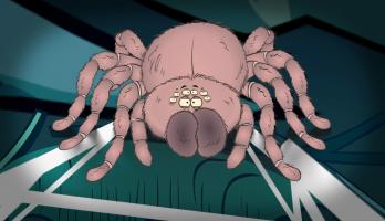 I'm a Creepy Crawly - E121 - Tarantula
