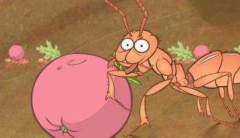 I'm a Creepy Crawly - E122 - Ant