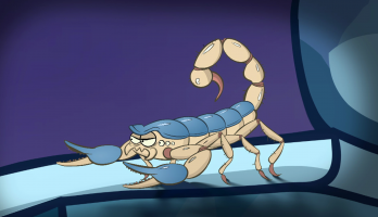 I'm a Creepy Crawly - E126 - Scorpion