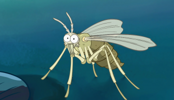 I'm a Creepy Crawly - E131 - Sandfly