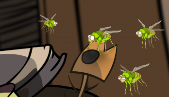 I'm a Creepy Crawly - E141 - Greenbottle Fly