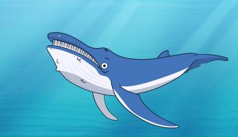 I'm a Fish - E19 - I'm a Blue Whale