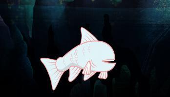 I'm a Fish - E20 - I'm a Cavefish
