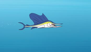 I'm a Fish - E23 - I'm a Sailfish