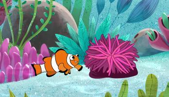 I'm a Fish - E36 - I'm a Clown Fish
