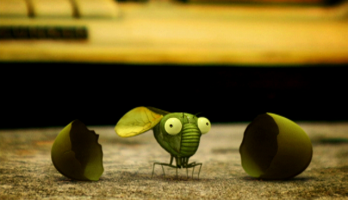 Minuscule - S1E44 - Cicada Do Brasil