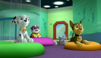Paw Patrol - S1E119 - Pups Save a Super Pup/Pups Save Ryder's Robot