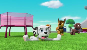 Paw Patrol - S2E211 - Pups Leave Marshall Home Alone/Pups Save the Deer