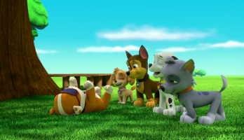 Paw Patrol - S2E218 - Pups Save an Adventure/Pups Save a Surprise