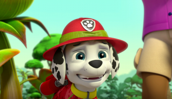 Paw Patrol - S3E324 - Pups Save a Giant Plant/Pups Get Stuck