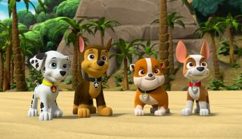 Paw Patrol - S6E1 - Pups Save the Jungle Penguins/Pups Save a Freighter