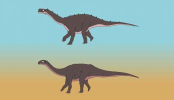 Ralph and the Dinosaurs - E22 - Vulcanodon
