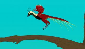 Ralph and the Dinosaurs - E24 - Xiaotingia