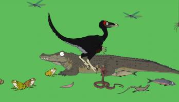 Ralph and the Dinosaurs - E26 - Zanabazar