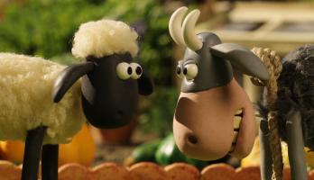 Shaun the Sheep - S4E25 - The Stare