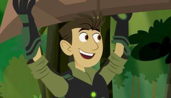 """Wild Kratts: """"Amazin"""" Amazon Adventure"""
