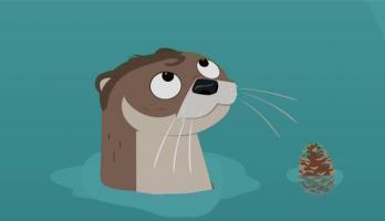 Wild Kratts - S3E3 - Slider, the Otter