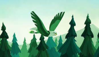 Wild Kratts - S5E18 - The Fourth Bald Eagle