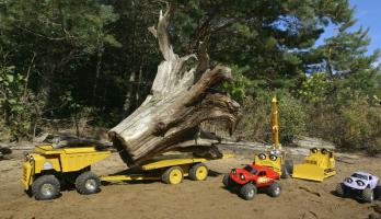 Zerby Derby - S1E15 - Driftwood Dilemma